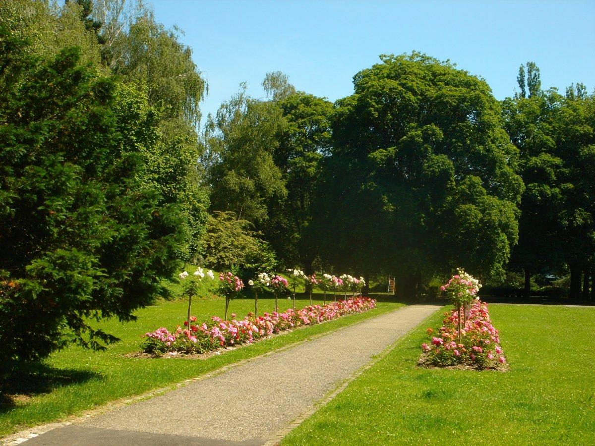 Pr sentation jb jardins for Entretien jardin geneve